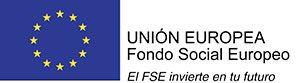 fse-300x83