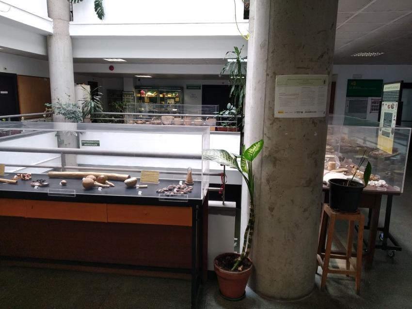 Expositores colección etnobotánica