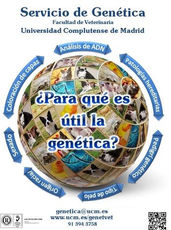 Servicio de genética.