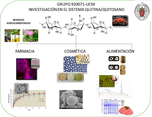 Esquema de oferta tecnológica del grupo Investigaciones en el sistema quitina quitosano.
