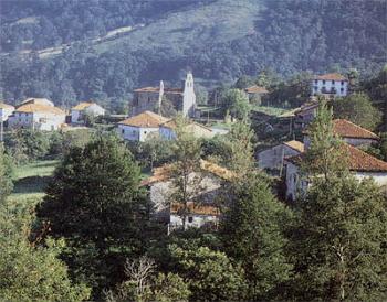 Paisaje rural en bosque mediterráneo.
