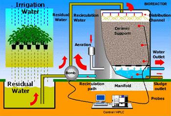 Biorreactor para la descontaminación de aguas residuales.