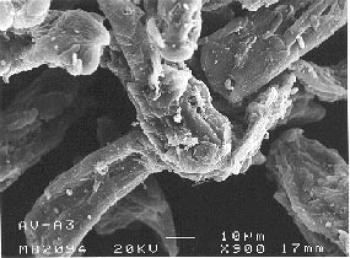 Microfotografía del polvo nasal.
