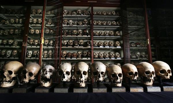 Colección de cráneos procedentes de las Islas Canarias en la Universidad de Edimburgo. / David Cheskin