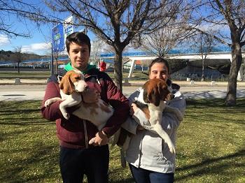 Los doctorandos Abel y Alicia han preparado a los Beagles para la ocasión. / J. S.