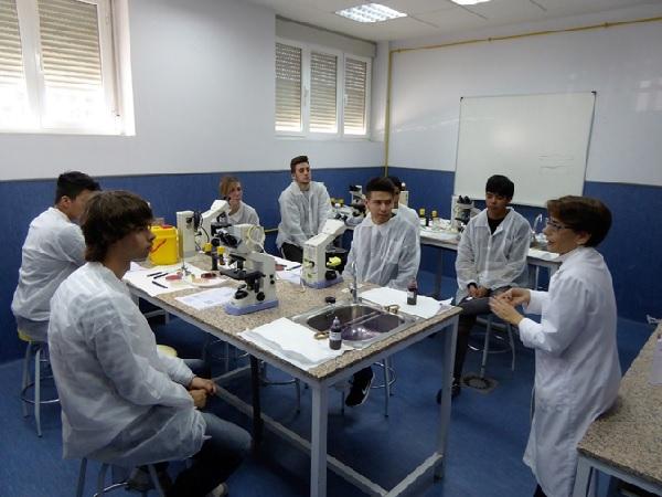 Una de las actividades en Veterinaria de la pasada edición de la Semana de la Ciencia, subvencionada en parte por FECYT. / UCM.