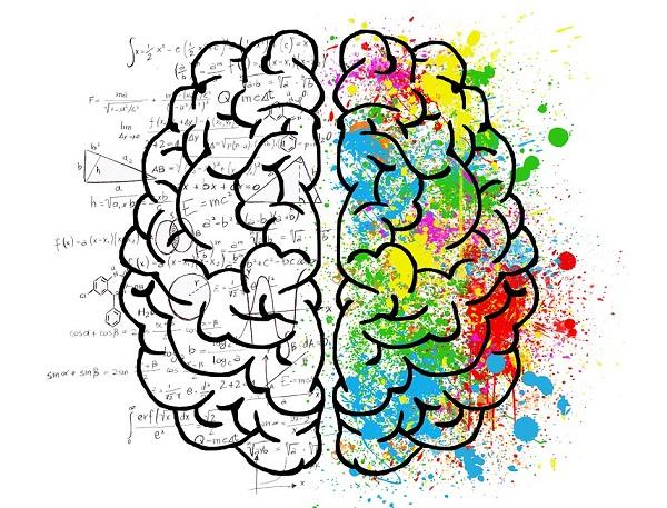 Los videojuegos de entrenamiento cerebral se han desarrollado en los últimos años para tablets o smartphones   / Elisa Riva