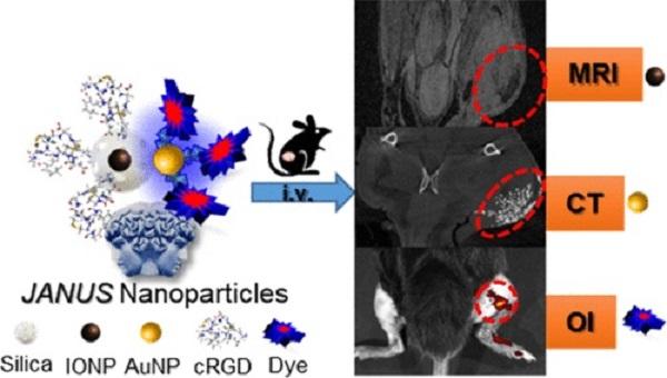 Composición y aplicación de la nanoplataforma JANUS para imagen medica multimodal. / Marco Filice.