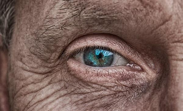 El ojo es una ventana, una proyección del cerebro. / analogicus