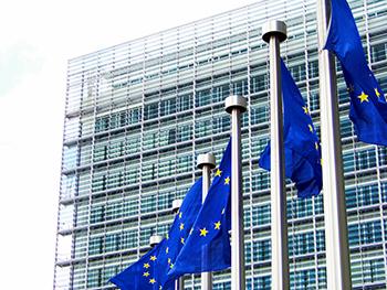 La Comisión y el Parlamento europeos son los encargados de aprobar las variedades transgénicas. / Álvaro Millán.