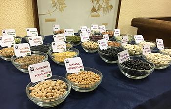 Variedades de legumbres presentadas por Alimnova. / UCM.