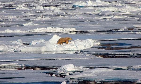 La principal amenaza del cambio climático en el Ártico es el deshielo. / Juan-Vidal Díaz.