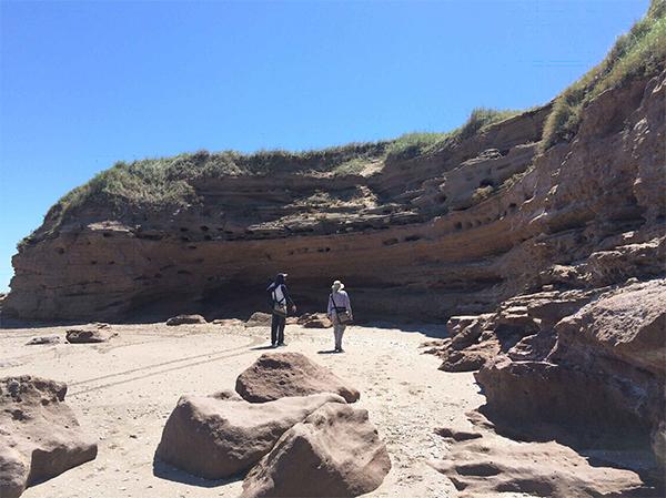 Acantilados de Monte Hermoso (Argentina), donde se han recuperado una gran abundancia de restos fósiles pertenecientes a diferentes especies faunísticas del Plioceno inicial. / Autora: Laura Domingo.
