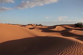 Campo de dunas en Marruecos. Autor: Multivac42.