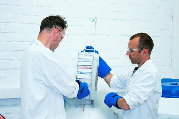 Laboratorio de criopreservación de plátanos en Bélgica. / Bioversity International/B. Panis.