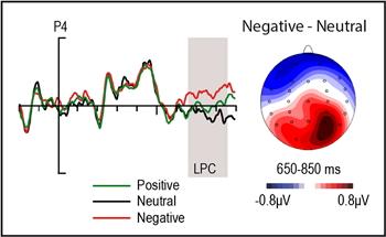 Patrón de actividad eléctrica cerebral característica del procesamiento de estimulos emocionales (EPN) producida por palabras negativas subliminales en comparación con palabras neutras. / UCM-ISCIII