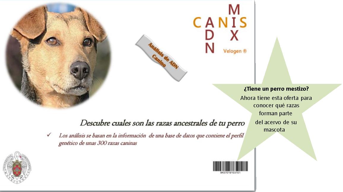 Oferta razas ancestrales perros