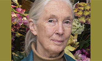 Vídeo de la investidura honoris causa de Jane Goodall