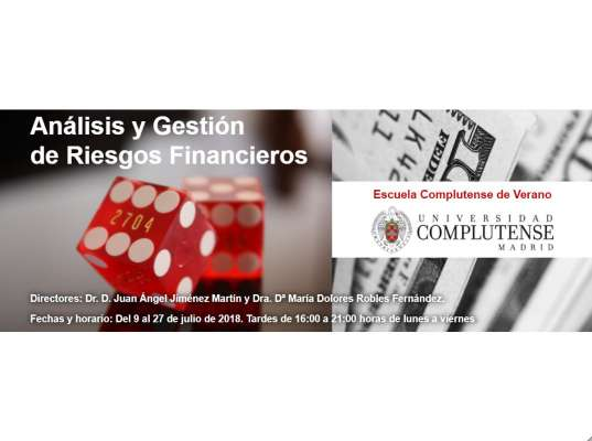 Course on Analysis and Management of Financial Risks. | Complutense Summer Program