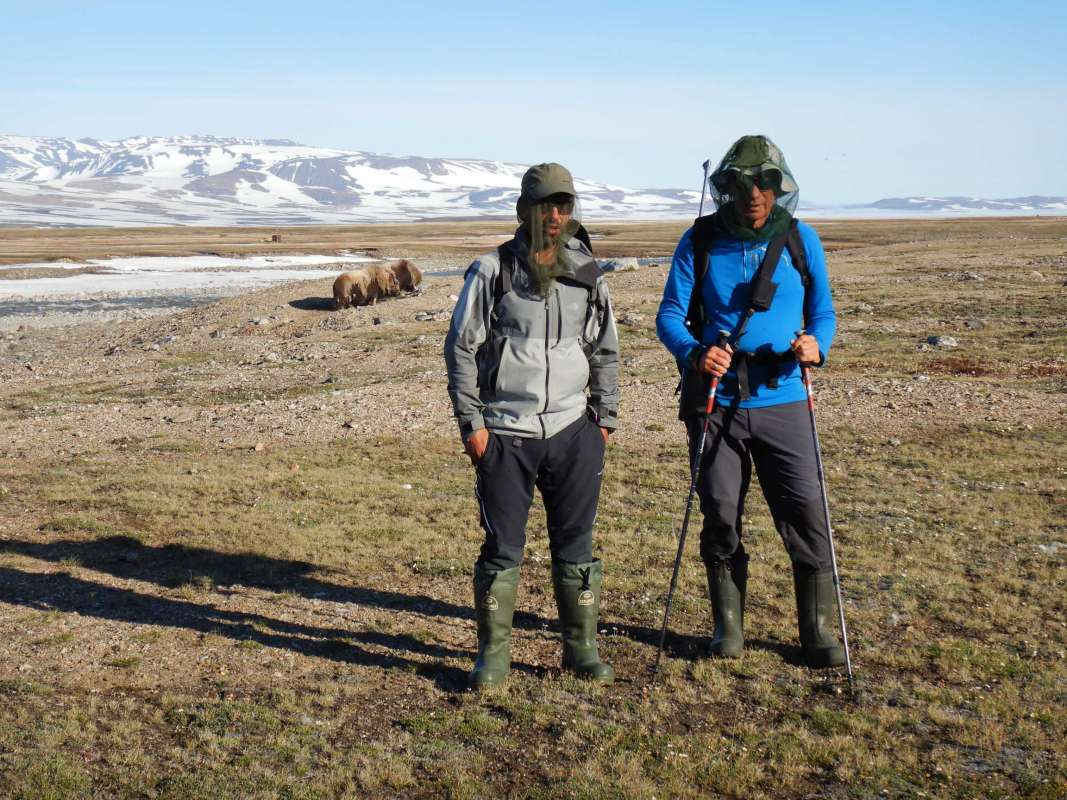 The PALEOGREEN expedition in Zackenberg, north of Greenland, has been developed with great success from July 16 to August 9, 2018 - 7