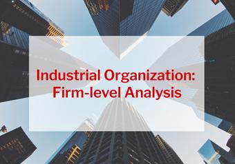 Industrial Organization: Firm-level Analysis