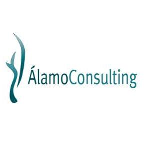 Alamo Consulting