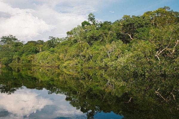 La deforestación en la Amazonía es cada vez más evidente. / Natalia Segato.