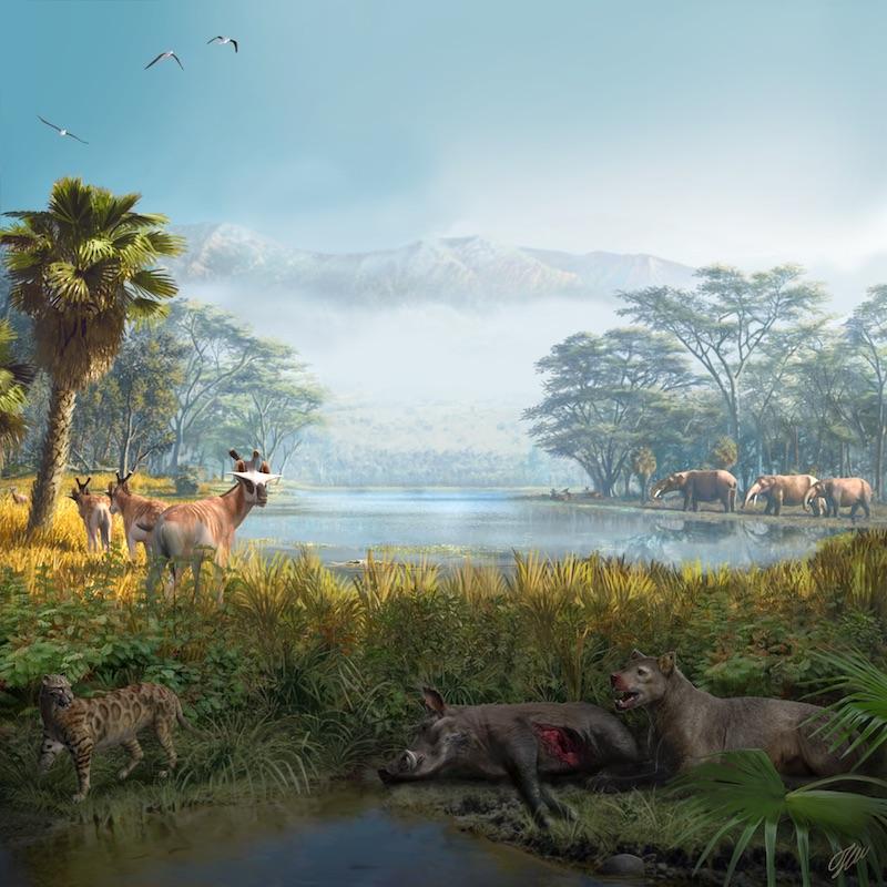 Reconstrucción paleoambiental de la comunidad extinta recuperada en el yacimiento paleontológico de Els Casots (Cataluña), datado en torno a hace 16 millones de años. Ilustración por Oscar Sanisidro (Universidad de Alcalá).