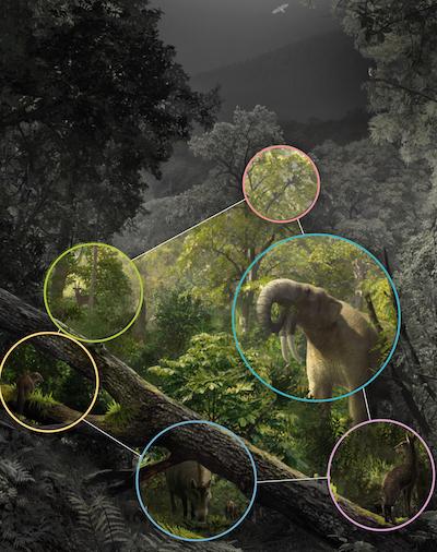 Reconstrucción paleoambiental de la red que formaba laextintacomunidad de mamíferosen el yacimiento paleontológico de Hostalets de Pierola (España), datado en torno hace 12 millones de años. / Arte por Oscar Sanisidro(Universidad de Alcalá).