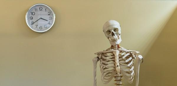 Gracias al ADN de huesos y dientes encontramos información sobre un individuo. / Shutterstock.